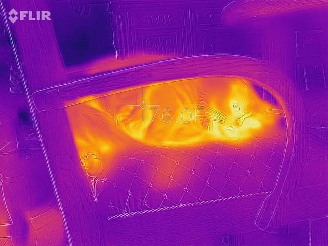 Review of FLIR's FLIRONE PRO IR Camera | Electronics Cooling